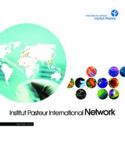 International Report 2010